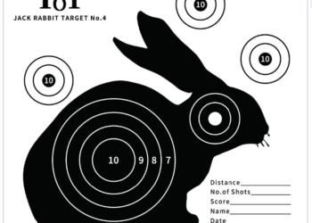 rabbit-target