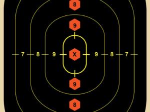 critical mass target